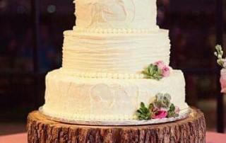 tertia-wed-cake